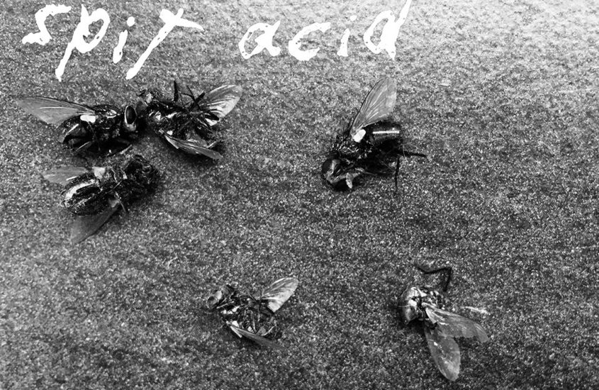 no!pop:short.reviews.für.die.ewigkeit: Spit Acid – Demo 2019