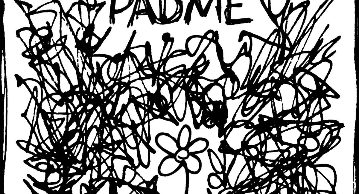 Padme – The Fine Line Between Being Conscious and Self Harm